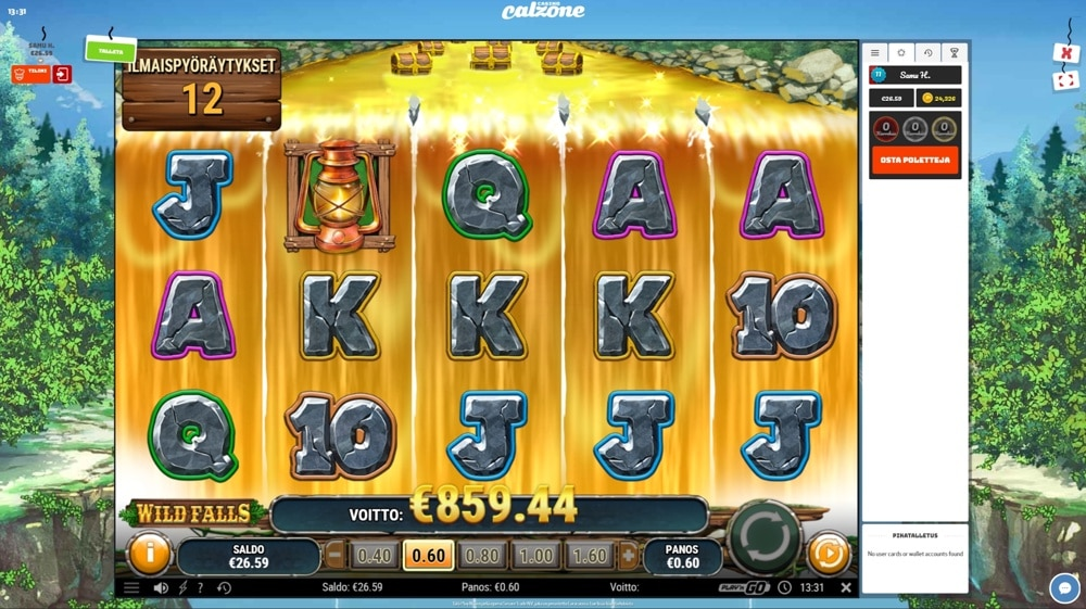 Wild Falls slot big win picture