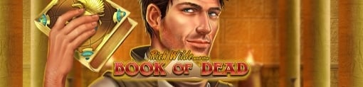 Book Of Dead By Play'n Go Slot Banner