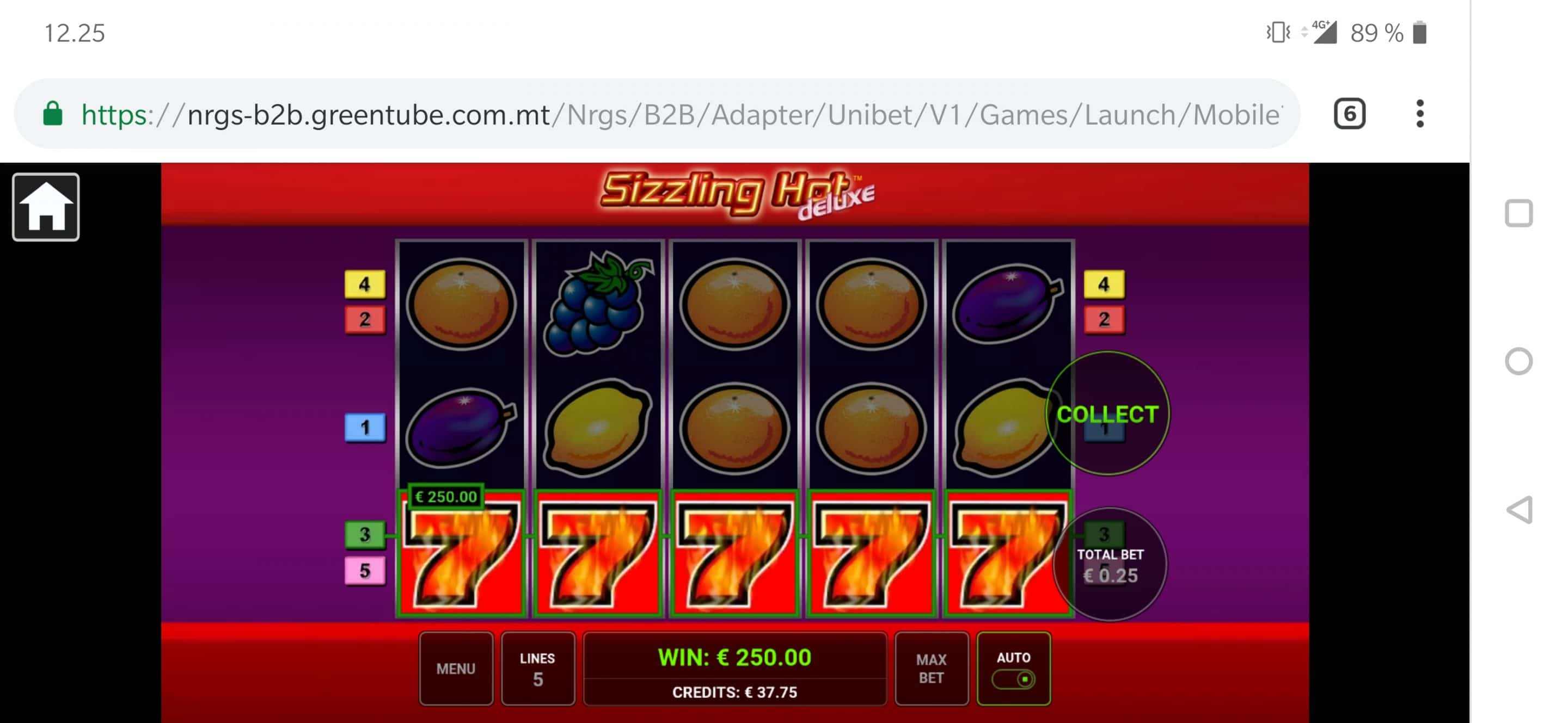 Sizzling Hot Big Win Picture