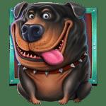 The Dog House A Symbol