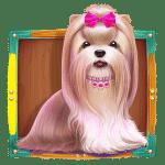 The Dog House Shihtzu Symbol