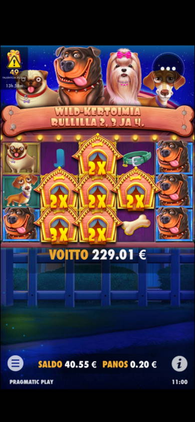 The Dog House Casino win picture by SJaN 10.7.2020 229.01e 1145X