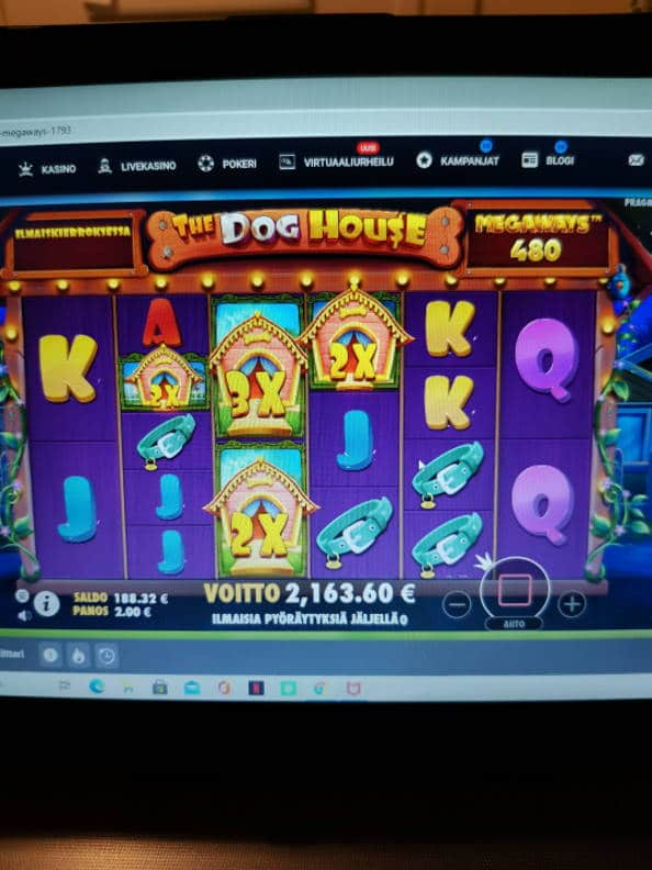 The Dog House Casino win picture by jyrkkenkloppi 29.10.2020 2163.60e 1082X