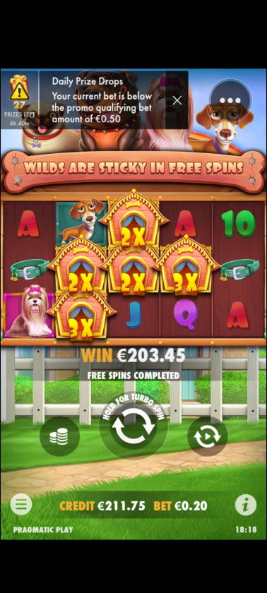 The Dog House Casino win picture by Muttis 1.5.2021 203.45e 1017X