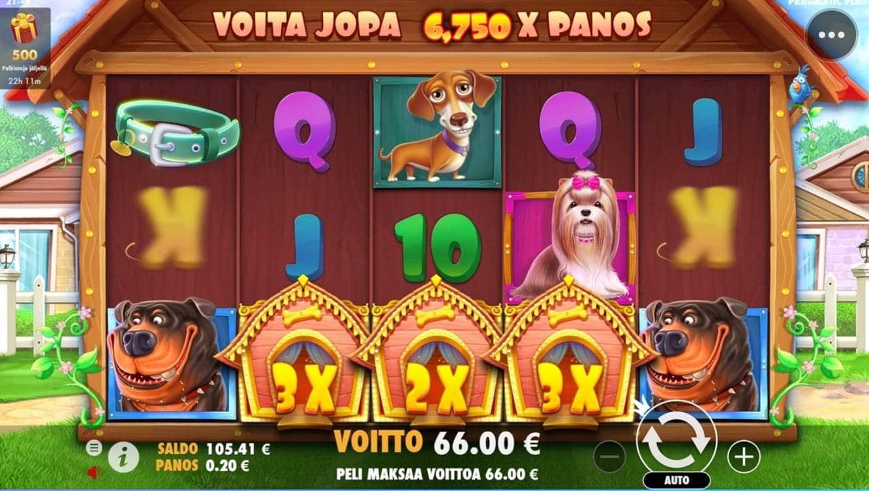 The Dog House Casino win picture by dj_niemi 9.7.2021 66e 330X