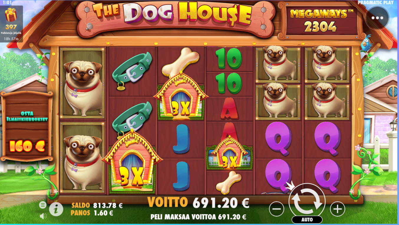 The Dog House Megaways Casino win picture by Makeke 30.6.2021 691.20e 432X Wildz